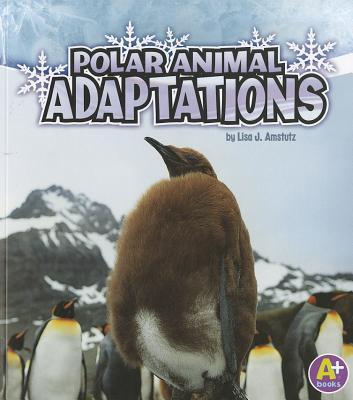 Polar Animal Adaptations By Amstutz, Lisa J.